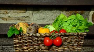Nedostatok kolagénu u vegetariánov