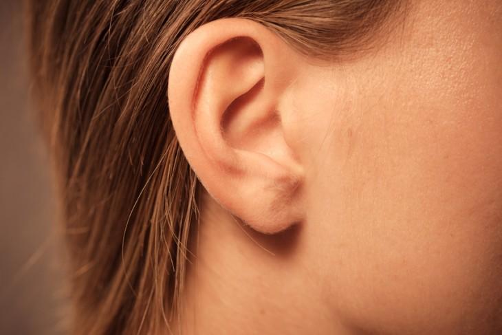 Ucho-chrupka
