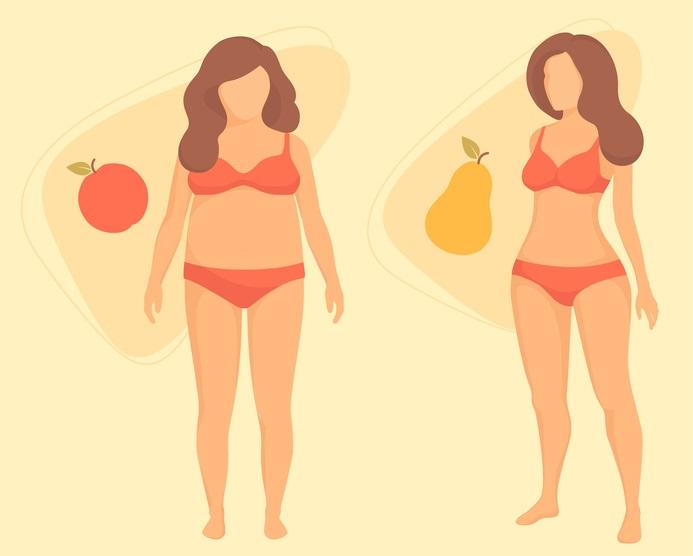 Obr.: Typy postavy - jablko a hruška